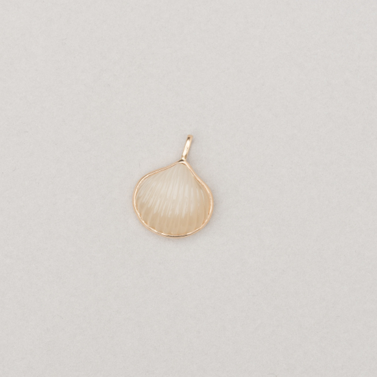 rose quartz anadara shell